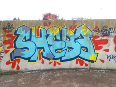 Shéba - Graffiti shéba bleu - 200x120cm - 2014