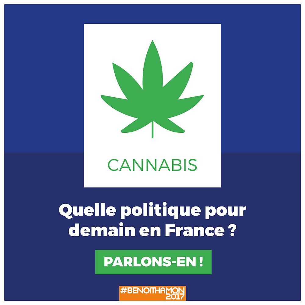 Infographie benoit hamon cannabis 1