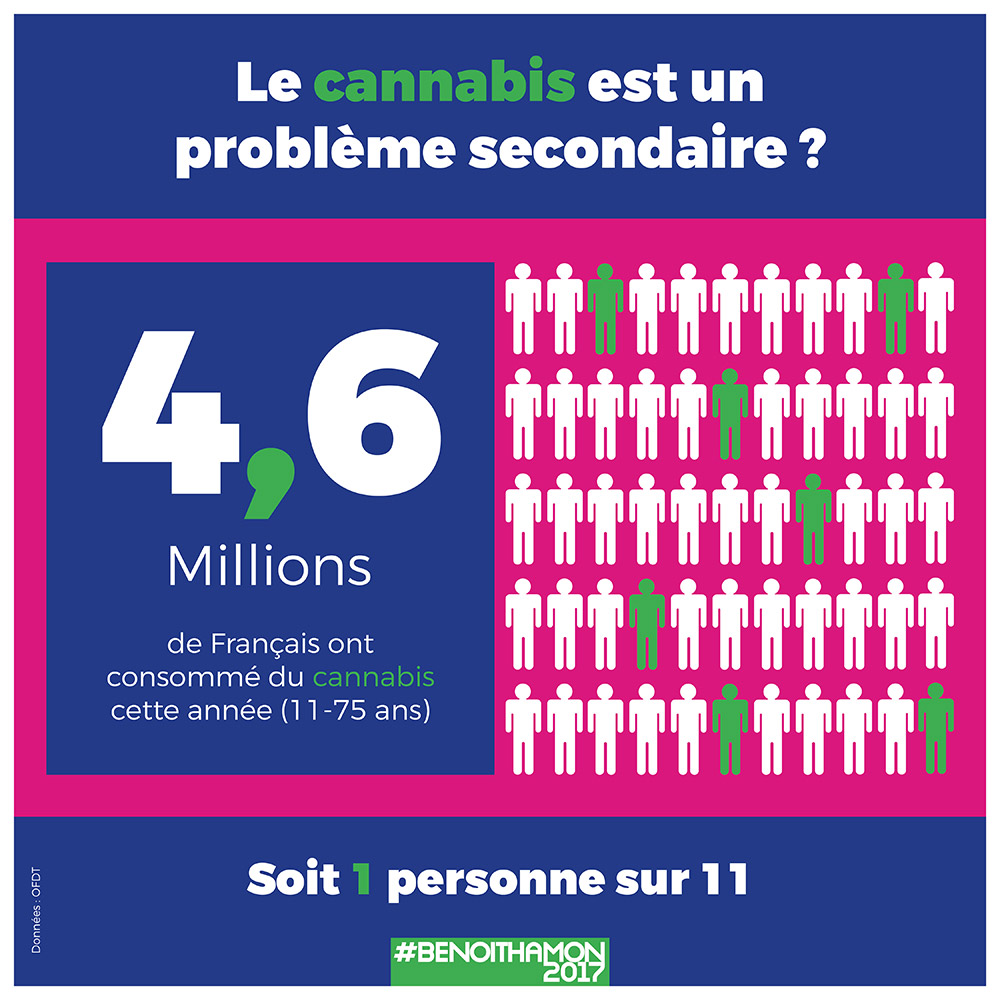 Infographie benoit hamon cannabis 4