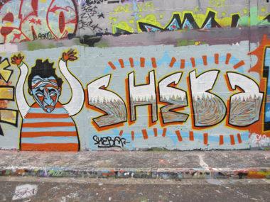 Shéba - Graffiti shéba flipé - 300x200cm - 2013
